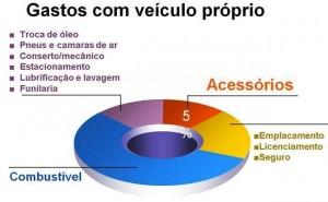 gráfico de itens que integram o gasto com veículo próprio do IBGE, inclusive acessórios automotivos
